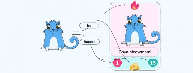 cat_parameters